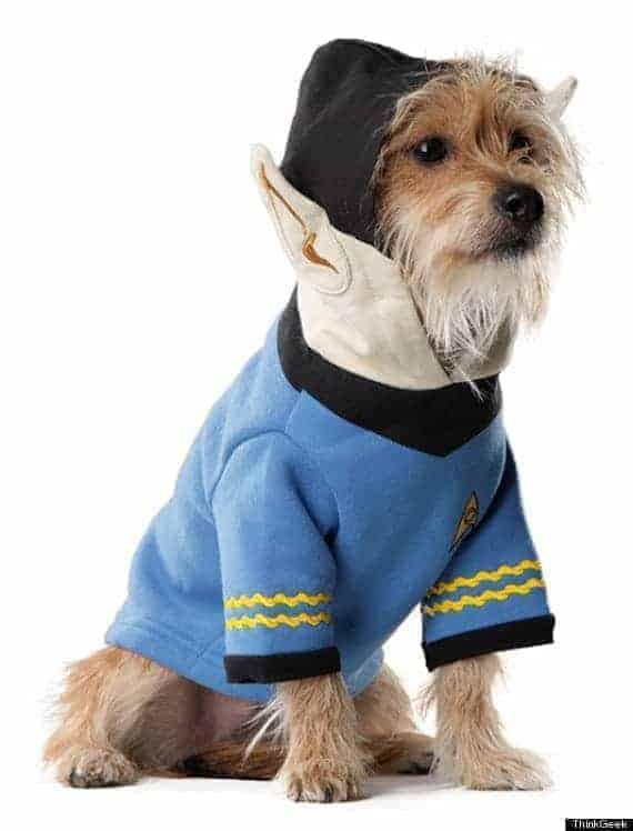 o-spock-dog-570